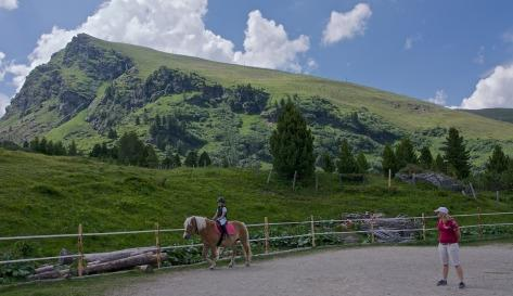 Riding in the summer on the Heidi Alm Falkert